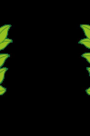 cropped-BG-logo-farve-lys-baggrund-150x150